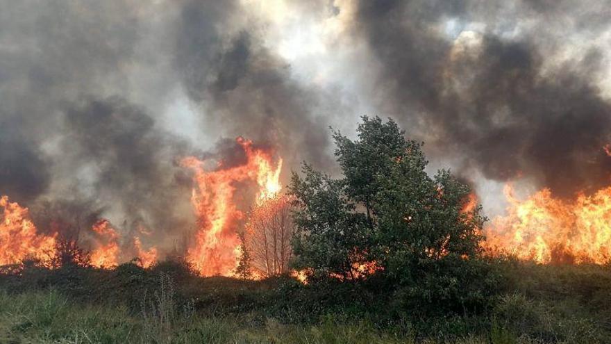 """Aviso por riesgo """"muy alto"""" de incendios en Tierra de Campos"""
