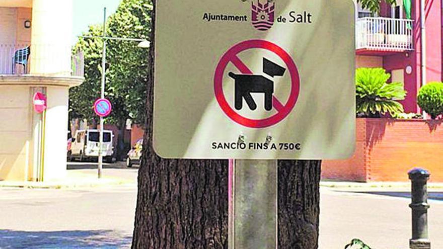 L'oposició de Salt firma per eliminar la restricció de gossos en espais públics