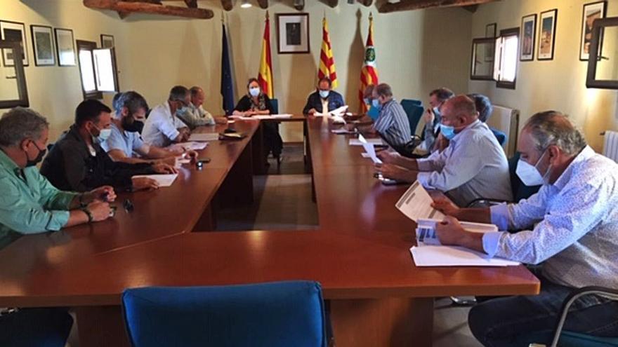 Nueva Comisión Consultiva de alcaldes