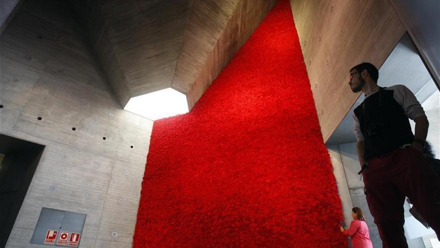 Un muro de claveles rojos