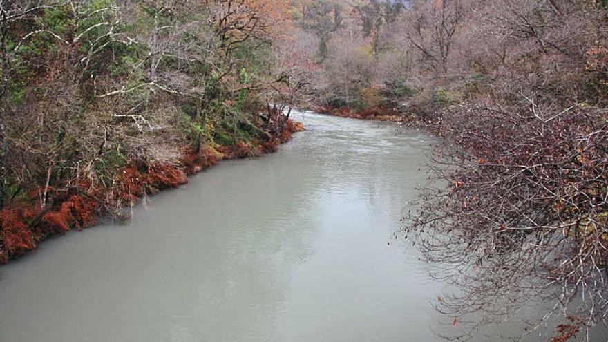 Endesa se enfrenta a dos multas de 950.000 euros por la contaminación del río Eume