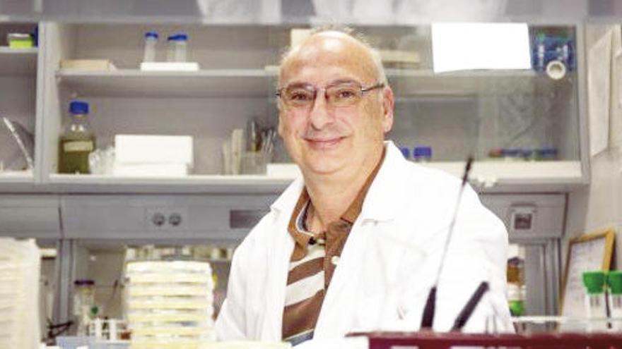 El investigador Francisco Mojica podría convertirse hoy en el tercer premio Nobel científico español