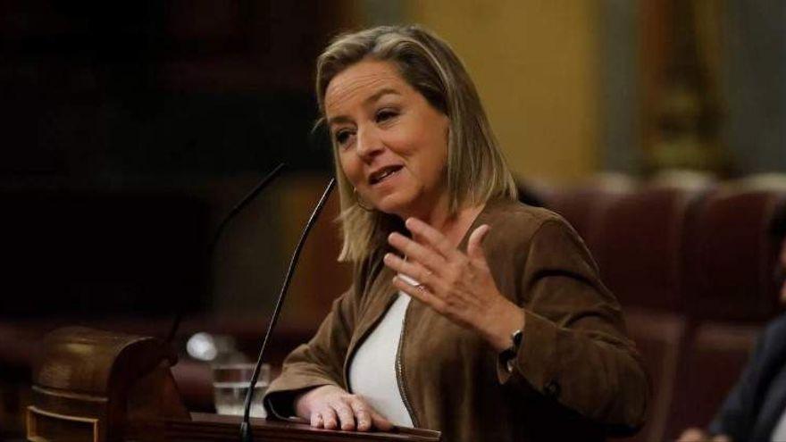 Oramas cuestiona la legalidad de la conceción a REE para hacer Chira-Soria