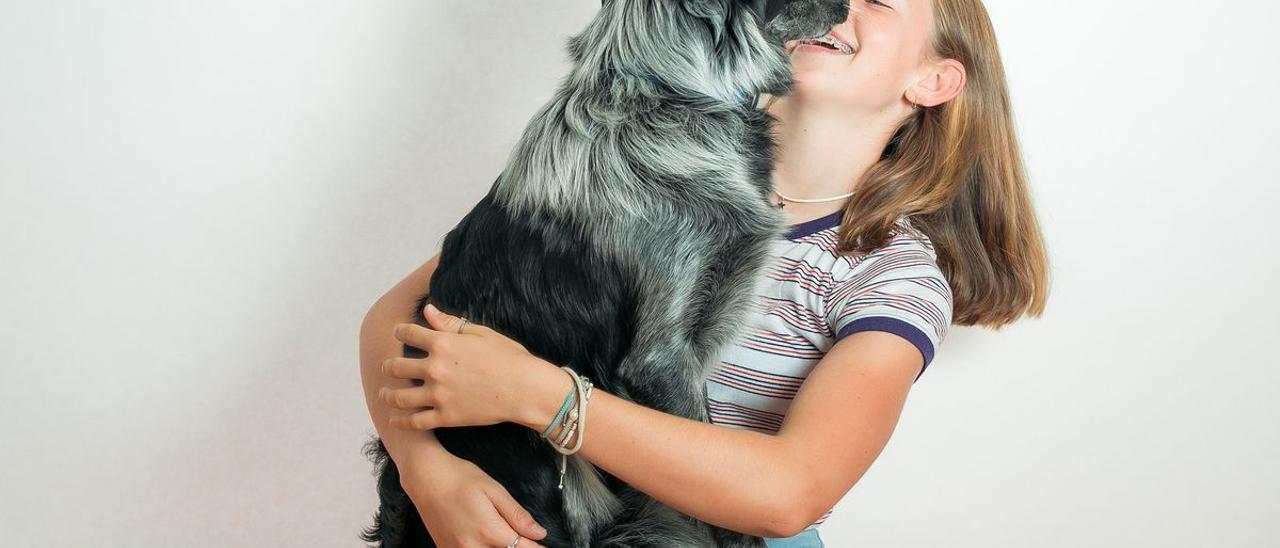 ¿Cómo proteger las patas de los perros en verano?