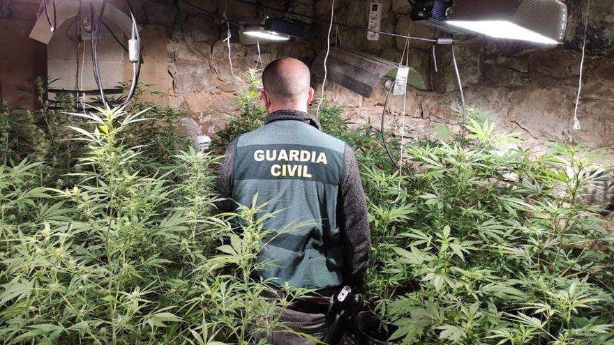 España y Serbia unen fuerzas contra el tráfico de marihuana