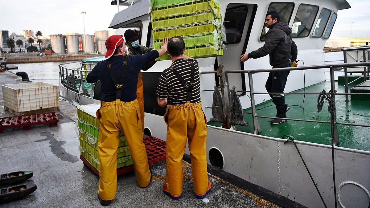 Trabajadores de uno de los barcos que descargan en la lonja del Puerto de A Coruña.  | // CARLOS PARDELLAS