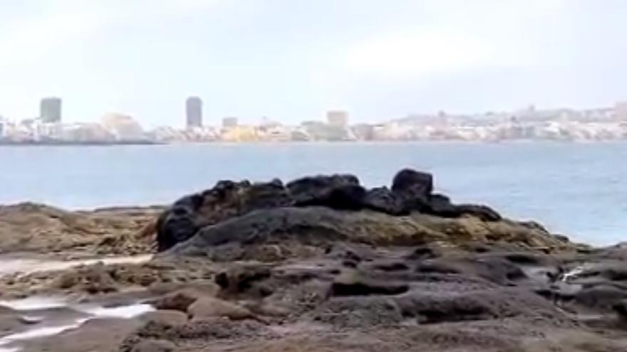 Tiempo en Las Palmas de Gran Canaria (24/06/21)