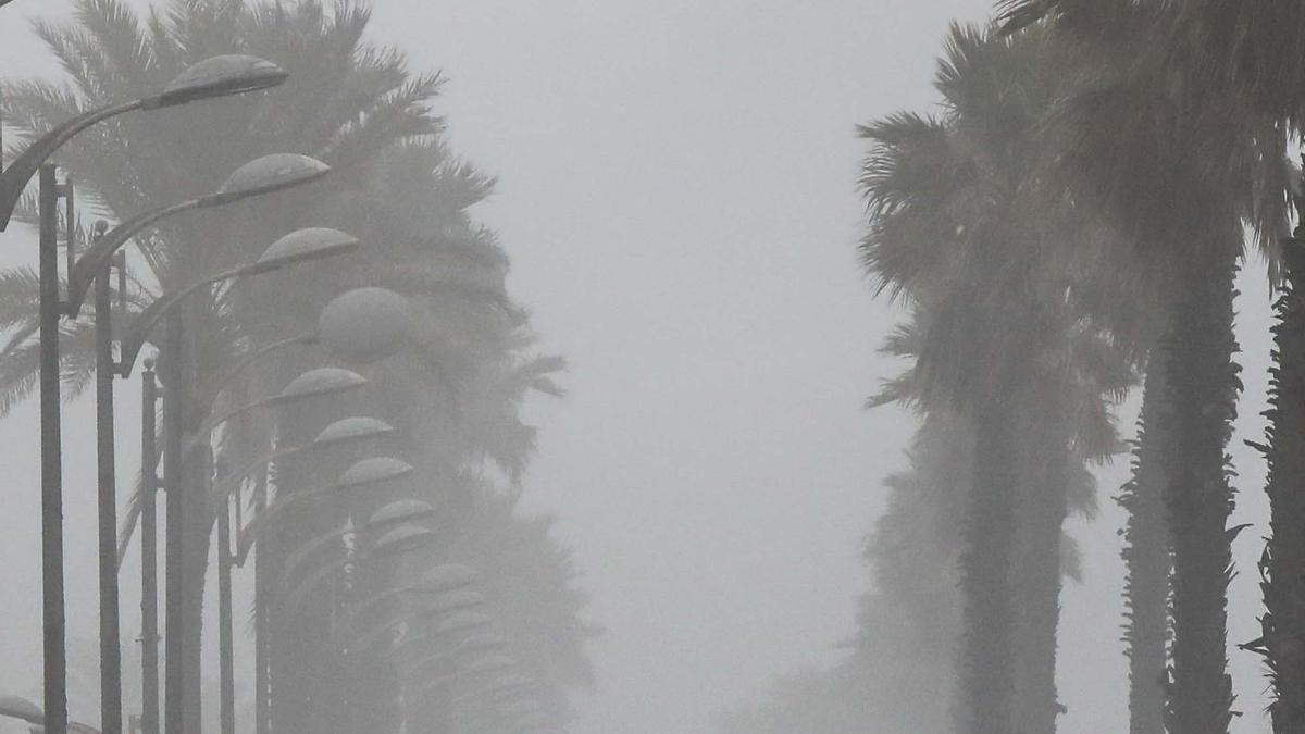La playa de la Patacona también se vió afectada por el temporal dejando imágenes curiosas como esta