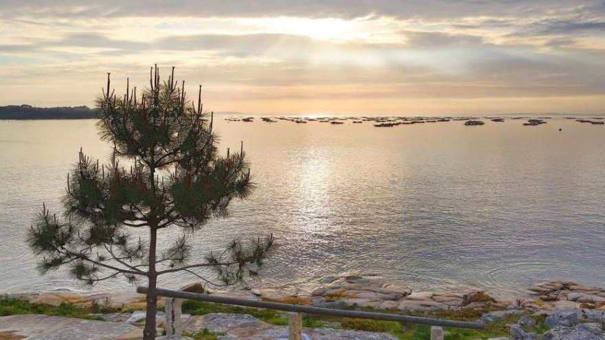 """Punta Moreiras, un rincón que vale la pena visitar en el """"paraíso del marisco"""""""