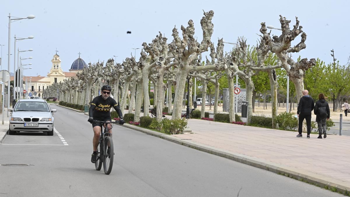 Un ciclista circula por uno de los viales de la avenida de Lledó.