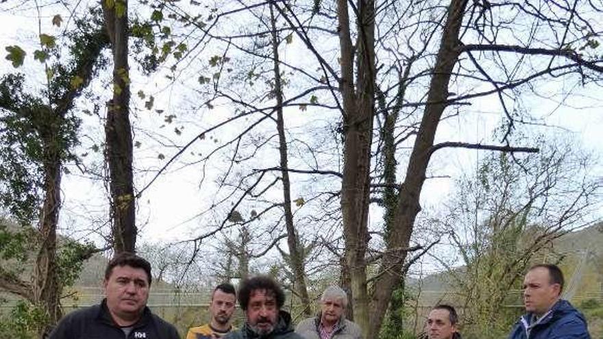 Fuentes del Narcea pide que no se saquen salmones del Narcea para repoblar