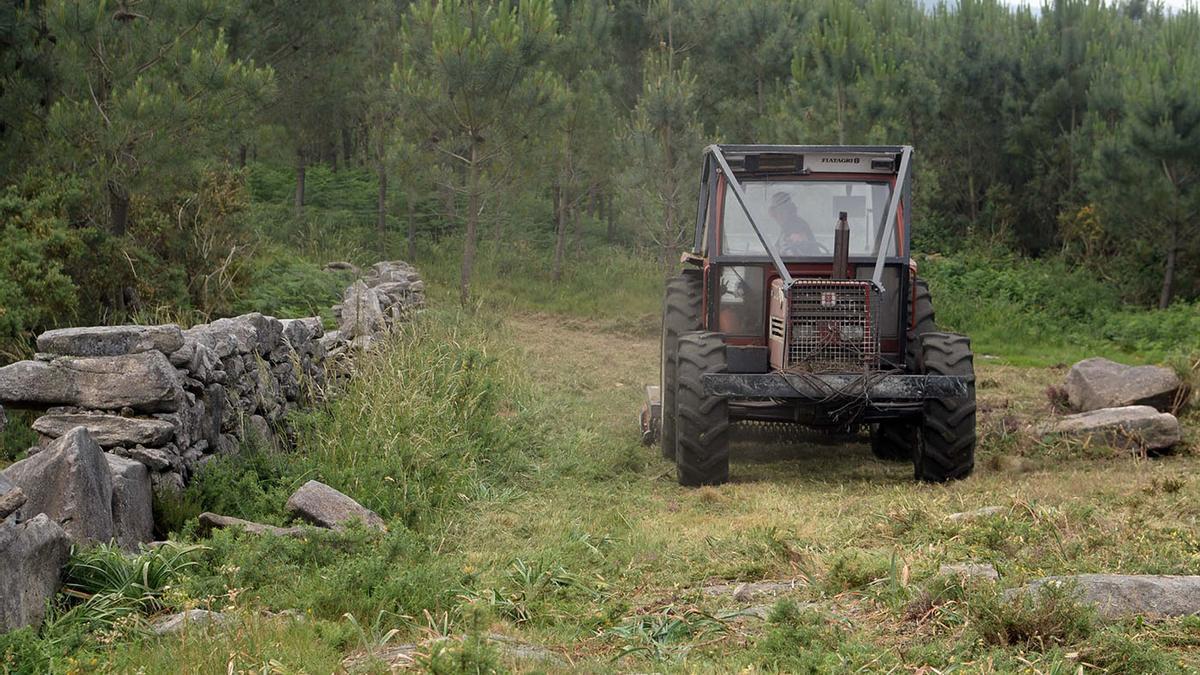 Un tractor desbrozando un monte en Galicia