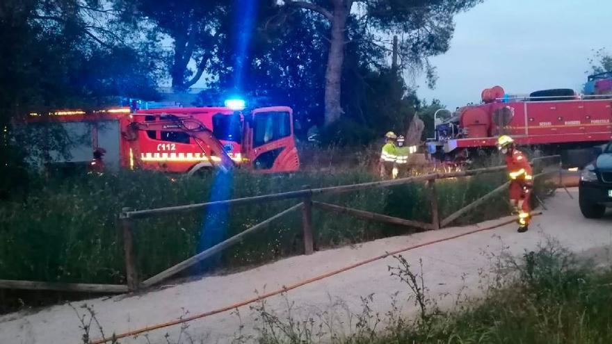 Los bomberos sofocan un incendio forestal en Riba-roja que ha afectado al parque natural