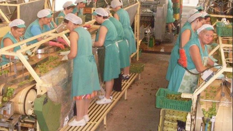 Conservas Moratalla se ve abocada al cierre de su fábrica