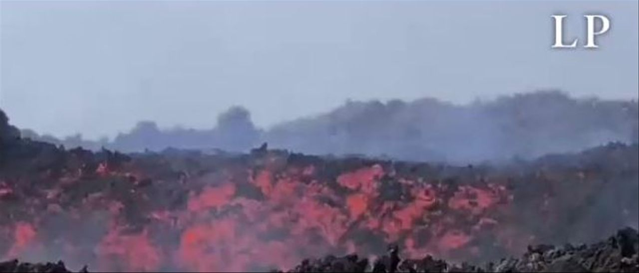 Canarias crea un registro único y pionero para tramitar las ayudas a los afectados por el volcán de La Palma