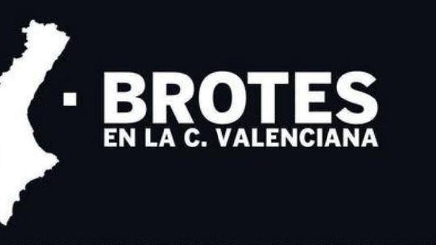 Todos los brotes de coronavirus en la Comunitat Valenciana