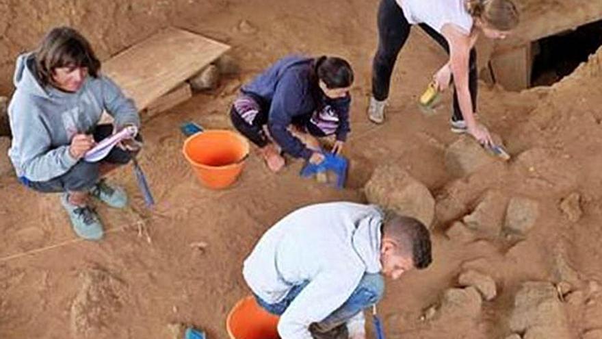 El Cabildo clasifica para su estudio el material hallado  en la cueva de Villaverde