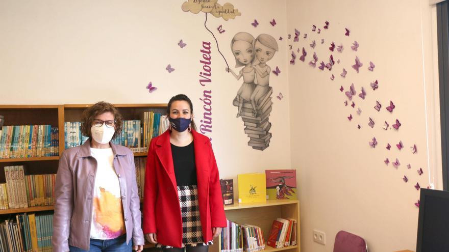 Un total de 62 municipios cordobeses tienen en sus bibliotecas un Rincón Violeta