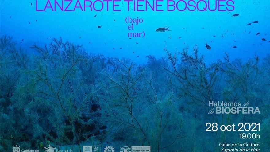 Jornada sobre los bosques bajo el  mar en Lanzarote