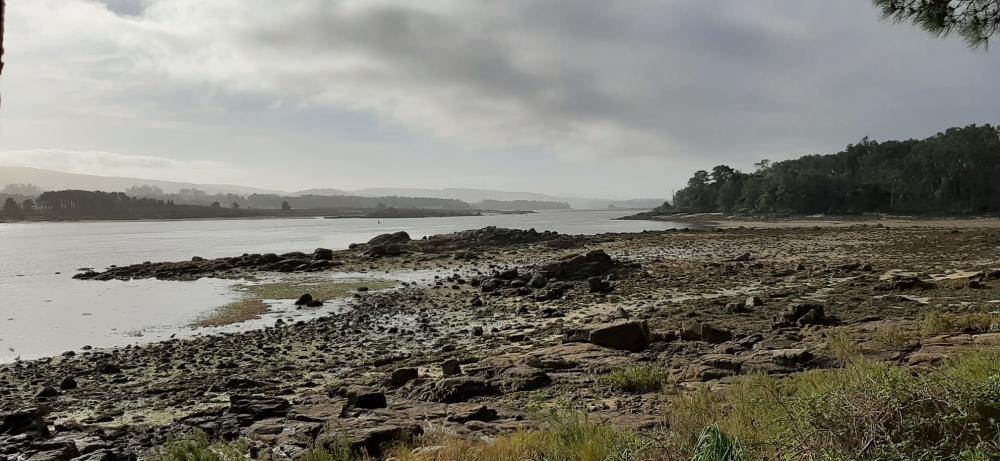"""""""Mareas vivas"""" en las rías gallegas."""