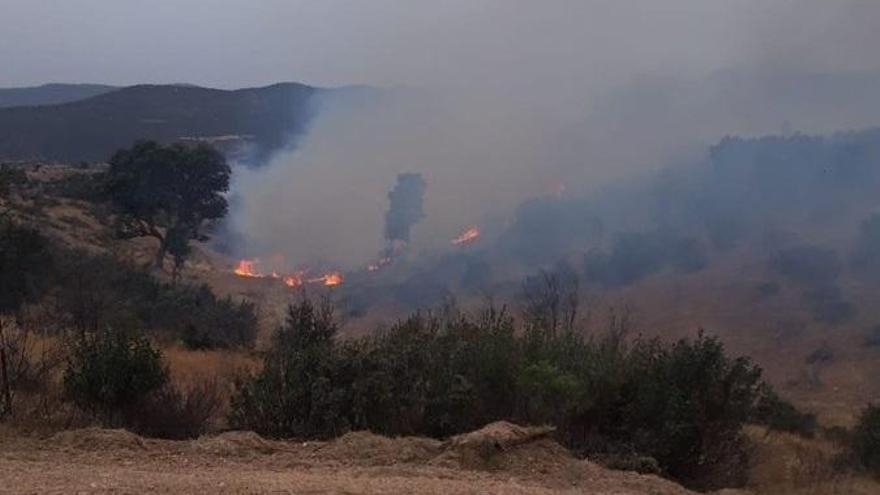 Controlado el incendio forestal declarado en Cerro Muriano este martes