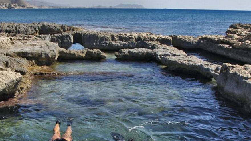 Retiran 100 kilos de basura marina en Los Baños de la Reina y la Cala de la Almendraba