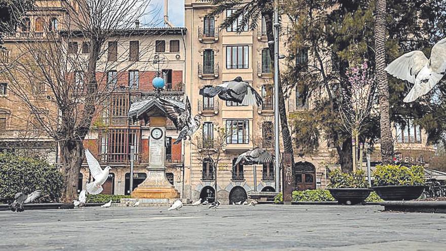 Desde el siglo XX | La Plaza de España prosigue su imparable degradación