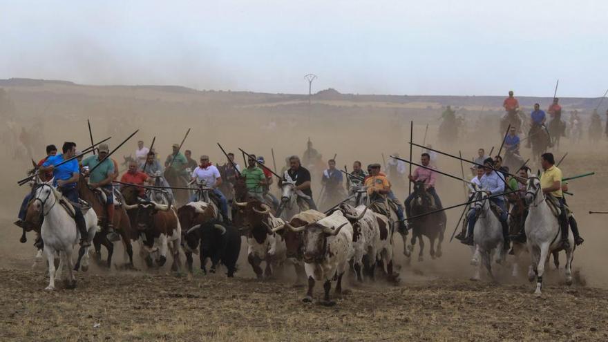 Guarrate suspende sus fiestas patronales y de grandes espantes taurinos