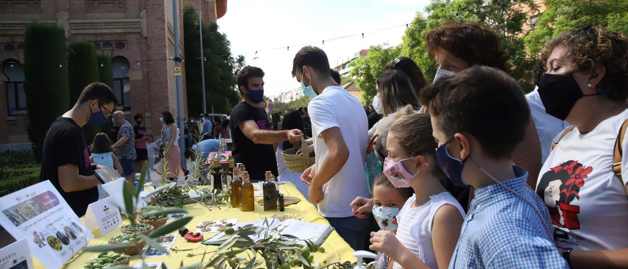 La ciencia se convierte en una fiesta infantil durante la Feria de los Ingenios