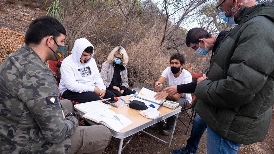 Recuperación del bosque termófilo de La Quinta (Santa Úrsula)