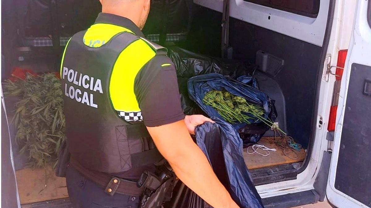 Un agente de la Policía Local de Casabermeja inspecciona la furgoneta, con 42 kilos de marihuana