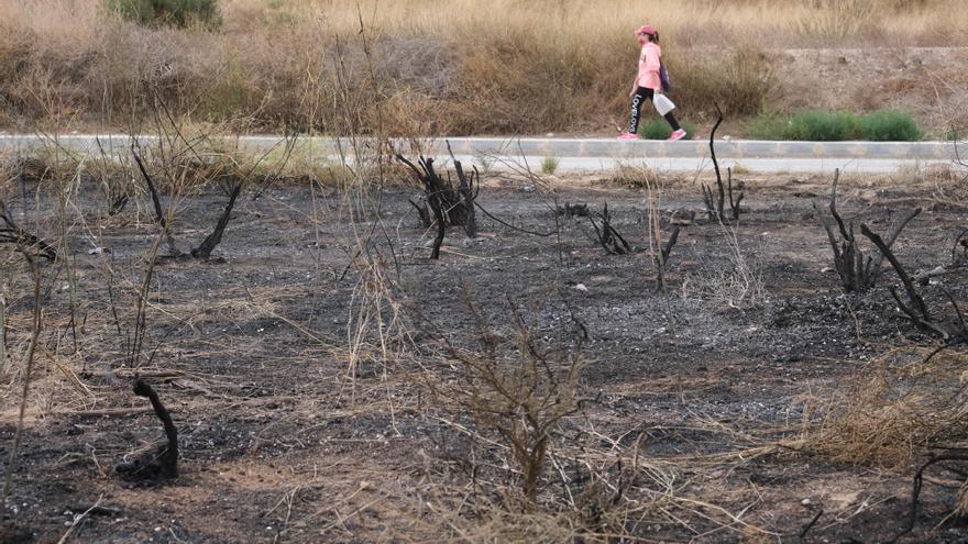 Aspe pide ayuda para localizar al pirómano que lleva más de 50 incendios en diez meses