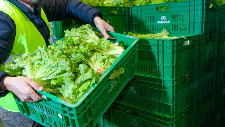 Gadis recicló más de 9,4 millones de kilos de plástico madera y cartón en 2020
