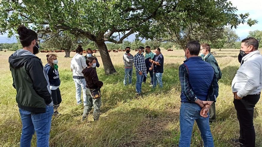 Jóvenes de Navalmoral aprenden prácticas para mejorar el rendimiento de la dehesa