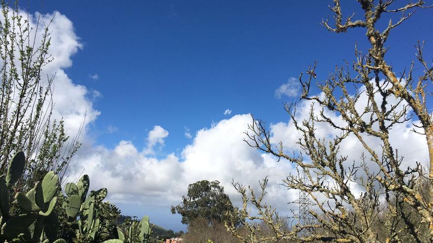 Este miércoles, cielos nubosos o con intervalos de nubes en Canarias