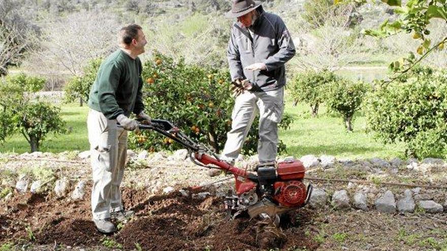 Gärtnern lernen auf Mallorcas historischem Landgut