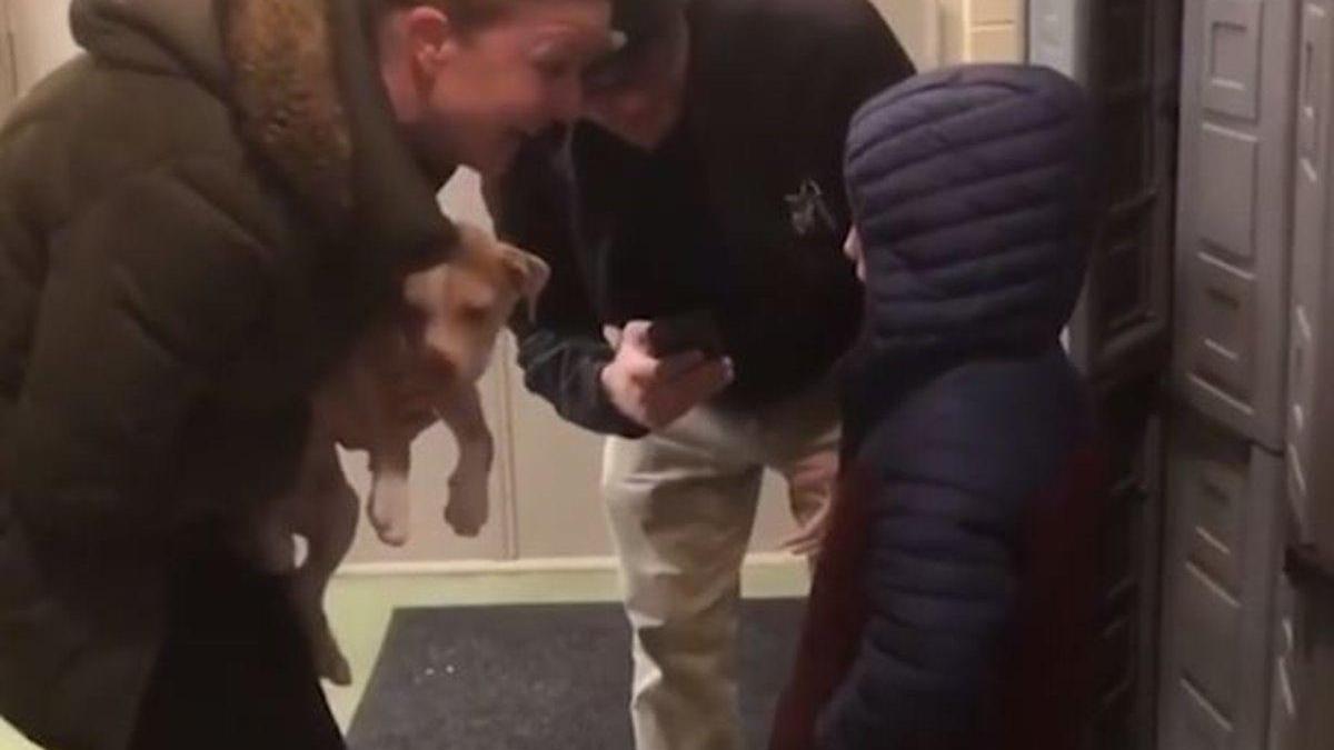 El llanto desconsolado de un niño al conocer a su nuevo perro días después de fallecer el anterior