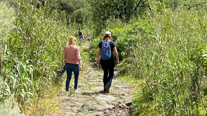 Retiran la maleza de cuatro kilómetros del histórico Camino de las Bestias