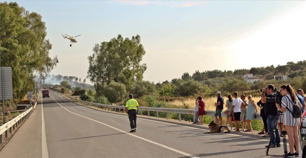 El incendio de ayer en Alcuéscar, en imágenes