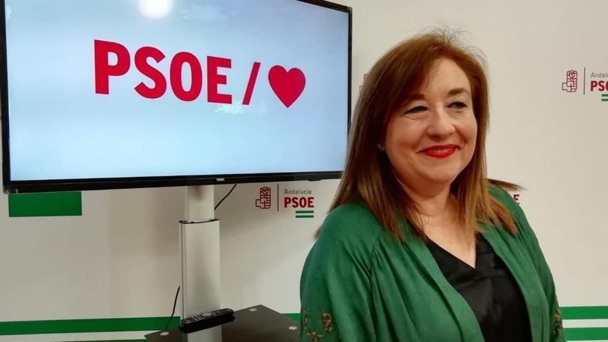 """El PSOE-A afirma que tras la derogación de la LOUA """"se esconden intereses privados"""""""