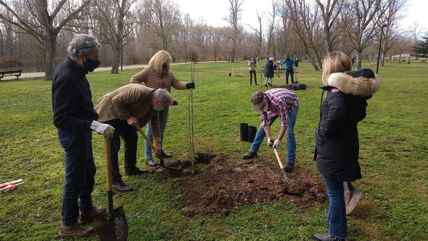 Una plantación participativa revitaliza el parque de Los Tres Árboles de Zamora