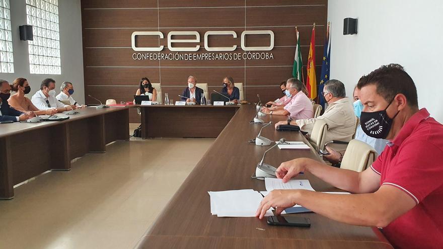 CECO pide a Isabel Albás mayor coordinación entre las delegaciones que afectan al desarrollo del turismo
