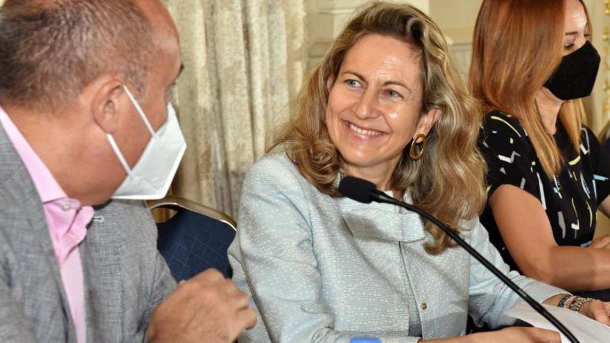 Carmen Sampol: «Ha llegado el momento de romper el monopolio de Endesa en Canarias»