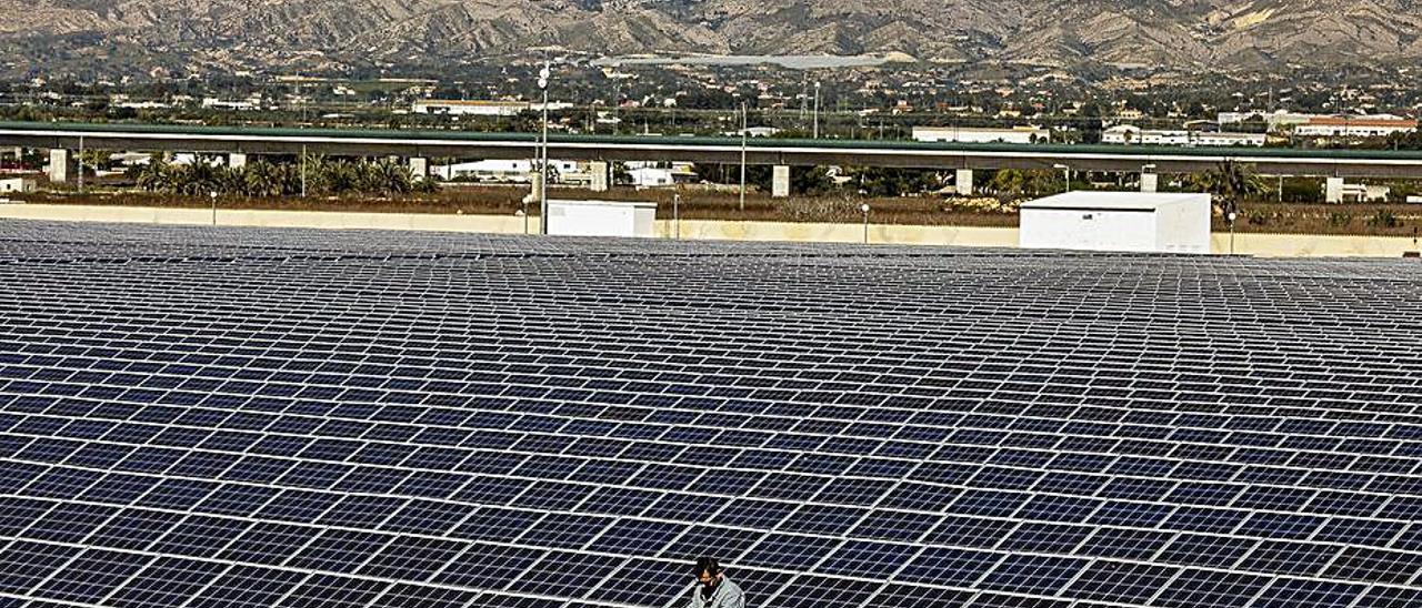 Una planta solar en la provincia.