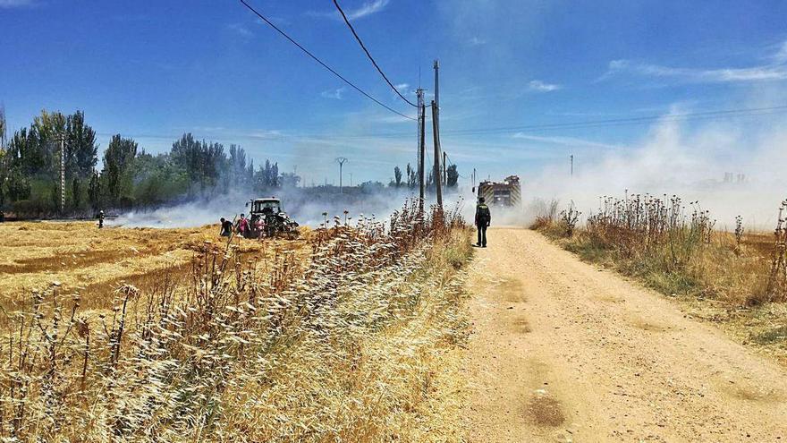 Sofocado un fuego en una tierra cosechada en Moraleja del Vino