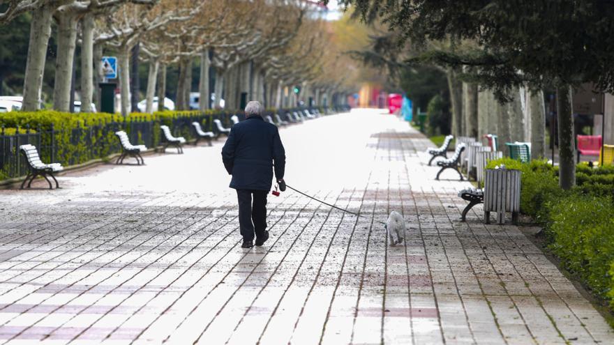 Salamanca pide a Junta que se permita sacar a perros tras el toque de queda