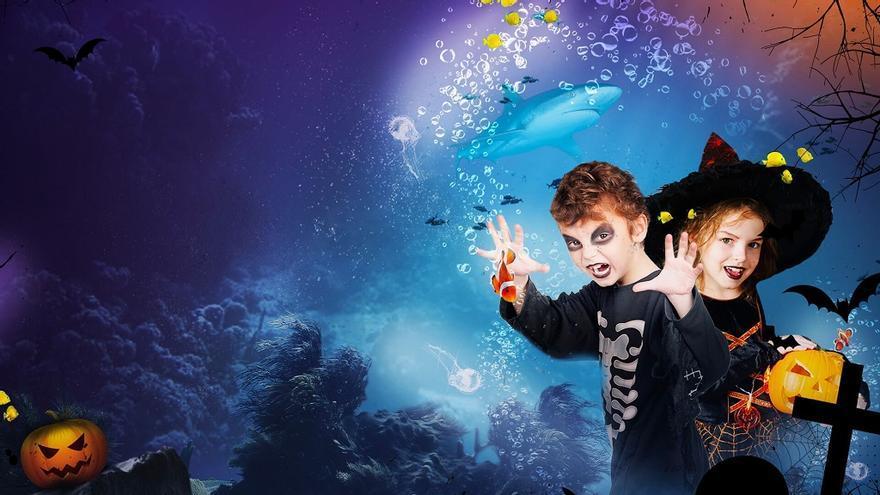 Sea Life celebra Halloween con entrada gratuita para los niños disfrazados