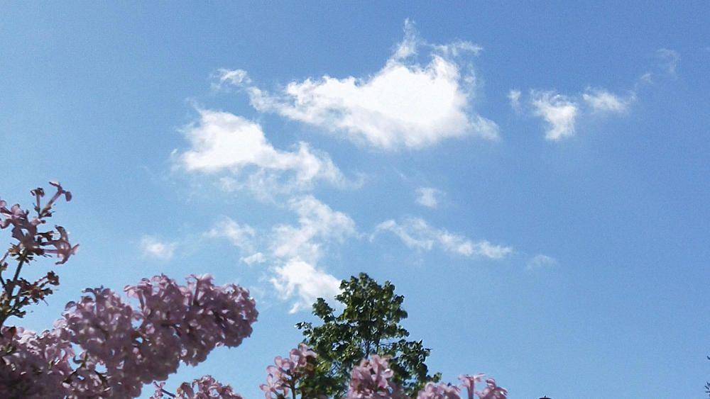 Cardona. Cel blau amb algun núvol.
