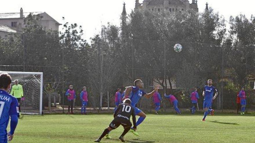 VfL Bochum im Trainingslager auf Mallorca: Interview mit Sportvorstand Hochstätter