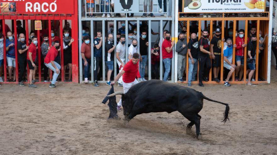 Este fue el mejor toro de las fiestas del Roser de Almassora